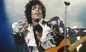 prince toalhas